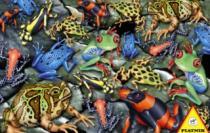 PIATNIK 1000 dílků - Žáby