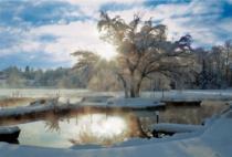 TREFL 2000 dílků - Zimní svítání u jezera