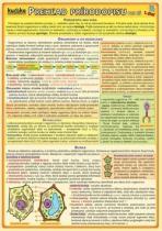 Kupka Prehľad prírodopisu pre ZŠ (1.diel)