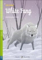 INFOA White Fang