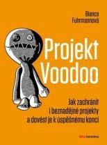 BizBooks Projekt Voodoo