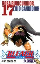 Tite Kubo: Bleach 17