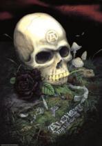 HEYE 1000 dílků - Alchemy Gothic, Růže