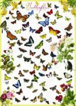 EUROGRAPHICS 1000 dílků Motýli