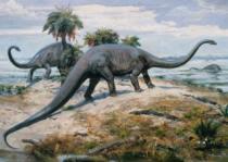 DINO 1000 dílků - Diplodocus