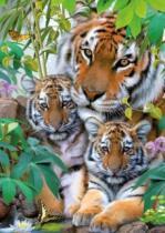 RAVENSBURGER 1000 dílků - Tygří rodinka