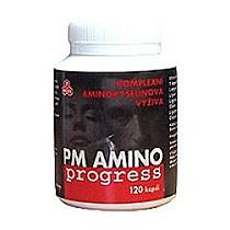 PM AMINO progress