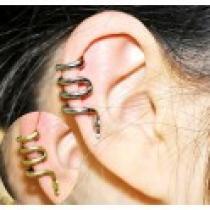Náušnice na ucho Snake NE253