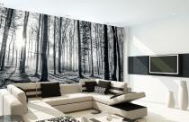 1Wall Černobílý les 315x232