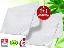 2G Lipov Chránič matrace Aloe Vera 160x200