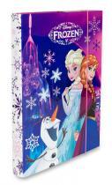 Karton P+P Box na sešity Frozen A4