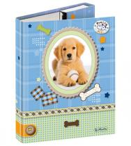 Herlitz Box na sešity A5 Pretty Pets Pes