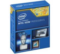 Intel Xeon E5-2687 v3 (BX80644E52687V3)