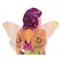 Křídla 50 cm Kostým