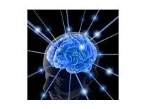 AWA Brno EEG biofeedback permanentka na 20 terapií