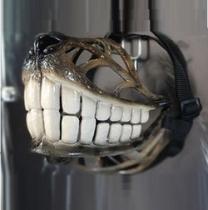 "Reedog - Náhubek pro psy design ""Smile"""