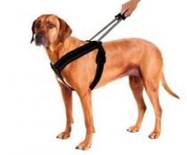 PatentoPet SportHarness Vodící vodítko/postroj pro psy