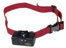PetSafe PBC19-10765