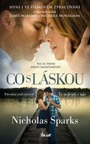 Nicholas Sparks: Co s láskou