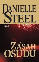 Danielle Steelová: Zásah osudu