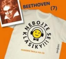 Nebojte se klasiky! 7 - Ludwig van Beethoven