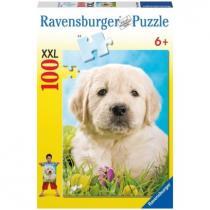 Puzzle Ravensburger - Štěně 100d XXL