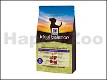 HILLS Ideal Balance Canine Mature Chicken and Brown Rice 12kg