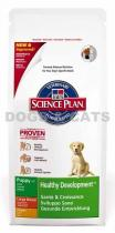 Hills Science Plan PUPPY LARGE BREED 2,5 kg, superprémium
