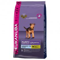 Eukanuba Puppy Large Breed 1kg