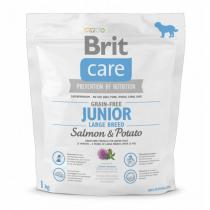 Brit Care Dog Grain-free Junior LB Salmon & Potato 1.0 Kg