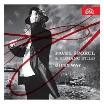 Gipsy Way / Bach, Brahms, Monti / -
