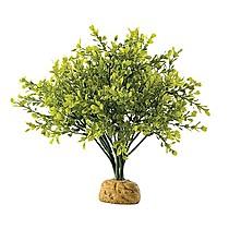 Hagen Exo Terra Boxwood Bush