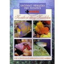 Ryby korálových útesů