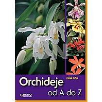 Orchideje od A do Z