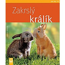 Monika Weglerová: Zakrslý králík