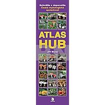 Jiří Burel: Atlas hub