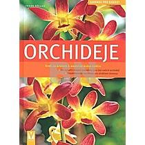 Frank Röllke: Orchideje