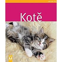 Brigite Eilert-Overbeck: Kotě