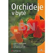 Eva Sedláčková: Orchideje v bytě