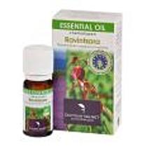 Cosbionat Esenciální olej ravintsara 10 ml BIO