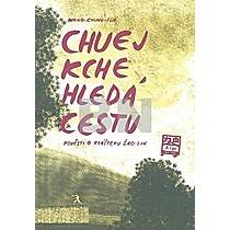 Wang Chung-Ťung: Chuej Kche hledá cestu
