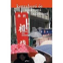 Óe Kenzaburó: Soukromá záležitost
