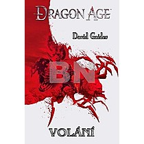 David Gaider: Dragon Age Volání