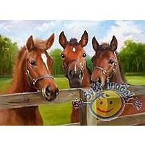 Ravensburger Puzzle 500 - Koně