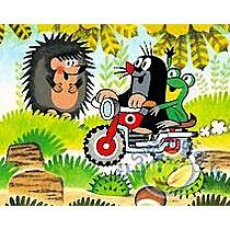Dino Dětské dřevěné kostky: Krtek a dopravní prostředky
