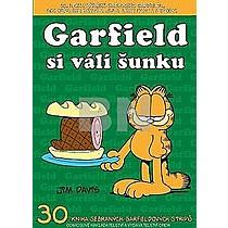 Garfield si válí šunku - Jim Davis