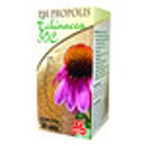 PURUS MEDA Echinacea