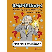 Vladimír Vecheta Einsteinovy hádanky a jiné hlavolamy