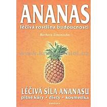 Barbara Simonsohn Ananas