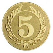 Emblém 5. místo